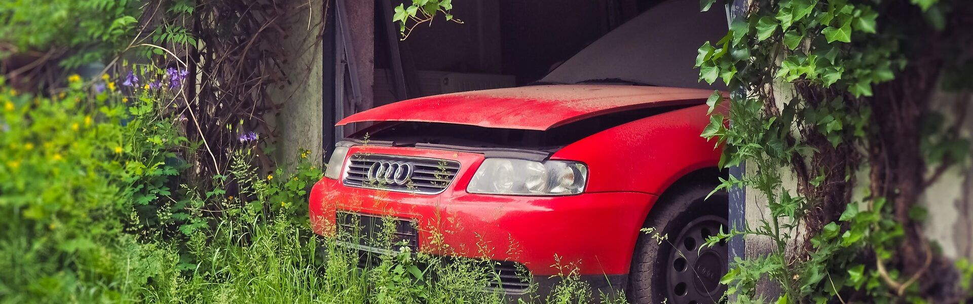 coches-zombies